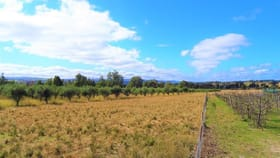 Rural / Farming commercial property for sale at 6 St Fillans Road Mudgee NSW 2850