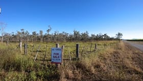 Rural / Farming commercial property for sale at 157/ Peters Road Mareeba QLD 4880