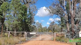 Rural / Farming commercial property for sale at 605 Bairstows Lane Gilgandra NSW 2827