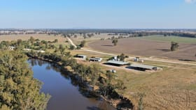 Rural / Farming commercial property for sale at 2627 Buckingbong Road Narrandera NSW 2700