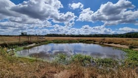Rural / Farming commercial property for sale at Mutchilba QLD 4872