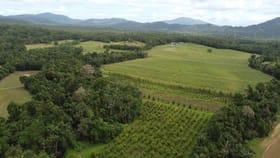 Rural / Farming commercial property for sale at El Arish QLD 4855