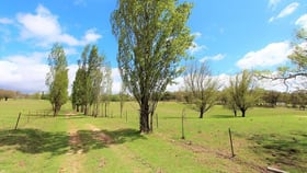 Rural / Farming commercial property for sale at Meadow Flat NSW 2795