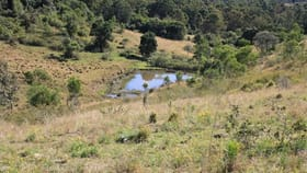 Rural / Farming commercial property for sale at Dondingalong NSW 2440