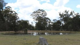 Rural / Farming commercial property for sale at 464 Wellingrove Road Wellingrove NSW 2370