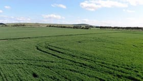 Rural / Farming commercial property for sale at Gnarwarre Road Inverleigh VIC 3321