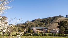 Rural / Farming commercial property for sale at 1110 Queens Pinch Rd Mullamuddy NSW 2850