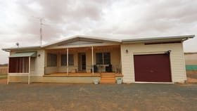 Rural / Farming commercial property for sale at 245 Bellarwi West Wyalong NSW 2671