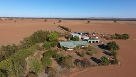 """Rural / Farming commercial property for sale at 893 """"Wheogo"""" Deaths Lane Grenfell NSW 2810"""