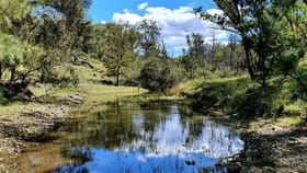 Rural / Farming commercial property for sale at Lot 2 Texas Road Pikedale QLD 4380