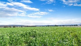 "Rural / Farming commercial property sold at 2484 ''Part Glenroc"" Wean Road Gunnedah NSW 2380"