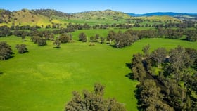 Rural / Farming commercial property for sale at 10 Nimbo  Road Tumut NSW 2720