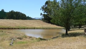 Rural / Farming commercial property for sale at 194 Preston Road Thomson Brook WA 6239