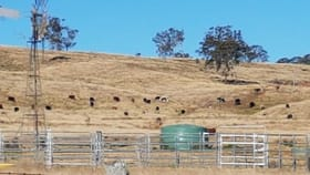 Rural / Farming commercial property for sale at Lot 7, 349 Plainby Road Crows Nest QLD 4355