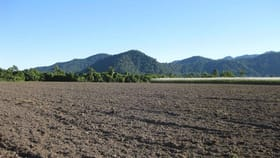 Rural / Farming commercial property for sale at Maadi QLD 4855