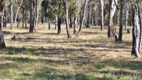 Rural / Farming commercial property for sale at 1142 MANCERS LANE Binnaway NSW 2395