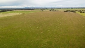Rural / Farming commercial property for sale at Kurrajong Hogans Lane Yerong Creek NSW 2642