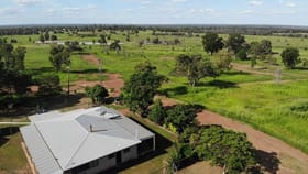 Rural / Farming commercial property for sale at 954 Red Hill Road Chinchilla QLD 4413