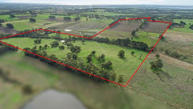 Rural / Farming commercial property for sale at 277 Barrys Road Barongarook West VIC 3249