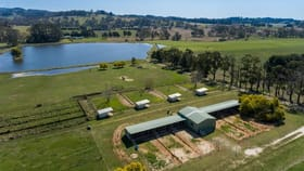 Rural / Farming commercial property for sale at 1155 Forest Road Orange NSW 2800