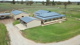 Rural / Farming commercial property for sale at 418 Nundle Rd Nemingha NSW 2340