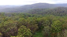 Rural / Farming commercial property for sale at Lot 70 & 71 Tyringham Road, Dorrigo NSW 2453