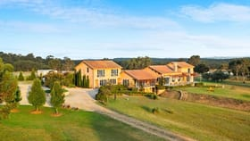Rural / Farming commercial property for sale at 160 Lomas Lane Nulkaba NSW 2325
