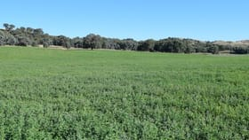 Rural / Farming commercial property for sale at 135 Blakney Creek North Road Blakney Creek NSW 2581