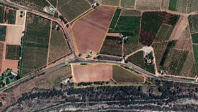 Rural / Farming commercial property for sale at 161,154 & 1944 Boronia Crescent & Silver City Highway Coomealla NSW 2717