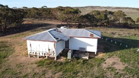 Rural / Farming commercial property for sale at 1499 Black Hill Road Black Hill SA 5353
