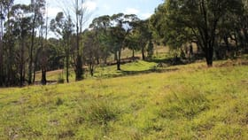 Rural / Farming commercial property for sale at 70 Bago Forest Road Tumbarumba NSW 2653