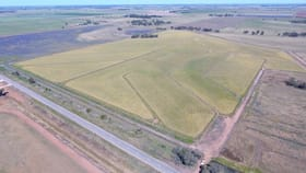 """Rural / Farming commercial property for sale at """"Part Farm"""" 1078 Murrami NSW 2705"""