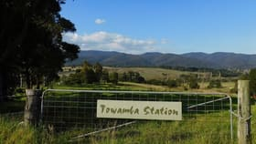 Rural / Farming commercial property for sale at 201 Pericoe Rd Towamba NSW 2550