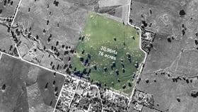 Rural / Farming commercial property for sale at Lot 152 Hamiltons Road Springton SA 5235