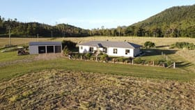 Rural / Farming commercial property for sale at 242 McFauls Road Mount Martin QLD 4754