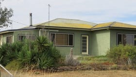 Rural / Farming commercial property for sale at 2646 Gineroi Road Warialda Rail NSW 2402