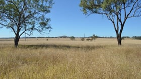 Rural / Farming commercial property for sale at 0 Cnr F Couper Rd & Gore Hwy Westbrook QLD 4350