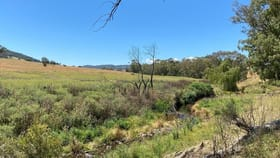 Rural / Farming commercial property for sale at 39/ Campbells Creek Road Mudgee NSW 2850