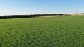 Rural / Farming commercial property for sale at Lot 12520 Great Southern Highway Boyerine WA 6316