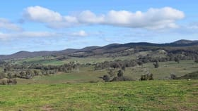 Rural / Farming commercial property for sale at 4, 1225 Yass River Road Yass NSW 2582
