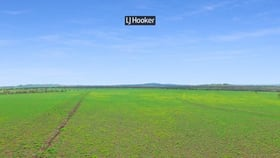 Rural / Farming commercial property for sale at 874 Gournama Road Warialda NSW 2402