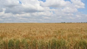 Rural / Farming commercial property for sale at Lot 13 Junabee Rd Junabee QLD 4370