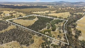 Rural / Farming commercial property for sale at 549 Fogartys Gap Road Walmer VIC 3463