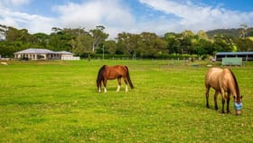 Rural / Farming commercial property for sale at 1376 Bolong Road Coolangatta NSW 2535