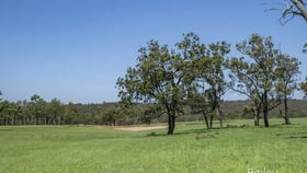 Rural / Farming commercial property for sale at 3/118 New Freugh Lane Singleton NSW 2330