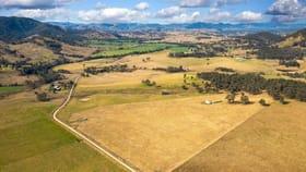 Rural / Farming commercial property for sale at Lot 20 Bowman Farm Road Bowman Farm NSW 2422