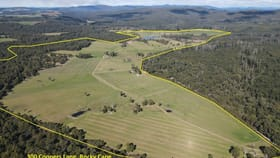 Rural / Farming commercial property for sale at 300 Coopers Road Rocky Cape TAS 7321