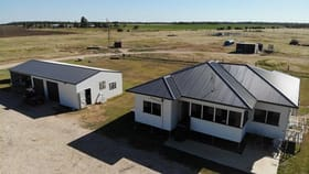Rural / Farming commercial property for sale at 131 Martins Road Chinchilla QLD 4413