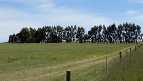 Rural / Farming commercial property for sale at 642 Gum Point Road South Naracoorte SA 5271