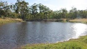Rural / Farming commercial property for sale at 15602 Cunningham Hwy Cunningham QLD 4370